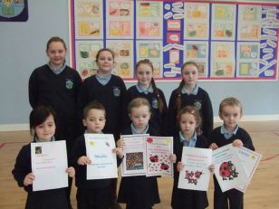 Bug Club Certificates