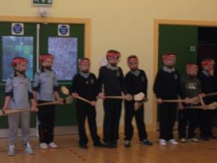 Hurling After School Coaching